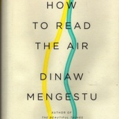 How to read the air, segona novel·la.