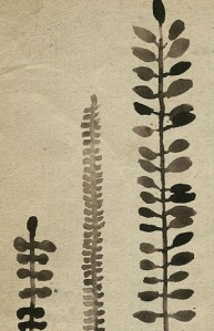 michelle tavares_etsy_rustic ferns 03
